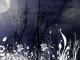 Karaoke - Flor d'Luna (Moonflower) - Santana - Playback, strumentale...
