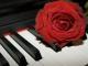 Karaoke - All Of Me - John Legend - Playback, strumentale...